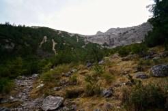 Die breite Aufstiegsschneise im Wald © Gipfelfieber.com