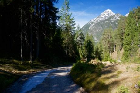 Aufstieg über die Naturrodelbahn ©Gipfelfieber