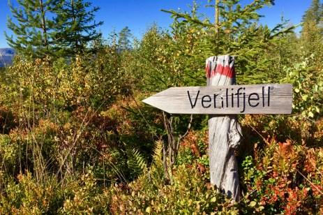 Zum Venelifjell da entlang ©Gipfelfieber
