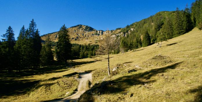Ochsenälpelekopf & Kreuzkopf: Stille Gipfel über dem Ammerwald ©Gipfelfieber