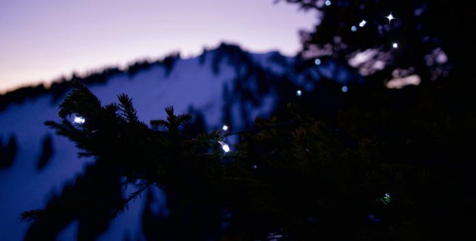 Outdooradvent: Wie die Krettenburg zum Weihnachtsbaum kam