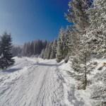 Winterwonderland ©Gipfelfieber
