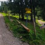 Forstweg zum Geigelstein ©Gipfelfieber