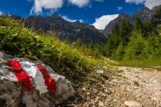 Rückblick zur Schönfeldspitze ©Gipfelfieber
