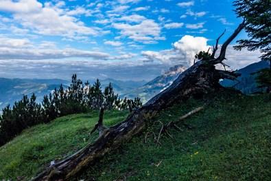 Saalfelden im Tal ©Gipfelfieber