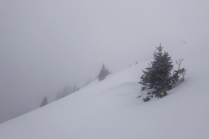 Nebel am Ratschigler Hang ©Gipfelfieber