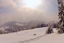 Ski und Schneeschuhwandern zum Mühlhörndel ©Gipfelfieber