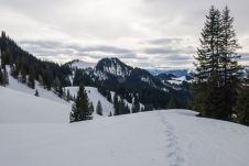 Blick zum Wandberg ©Gipfelfieber