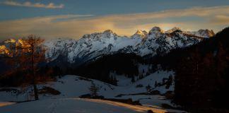 Alpengucken: Frühlingserwachen am Thällerer Kogel ©GipfelfieberAlpengucken: Frühlingserwachen am Thällerer Kogel ©Gipfelfieber