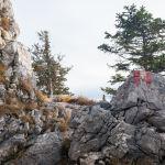 Gipfelsteig ©Gipfelfieber
