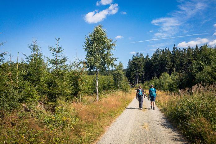 Projekt 16 Gipfel: Der Langenberg – In NRW ganz oben