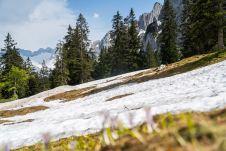 Überbleibsel des Winters ©Gipfelfieber