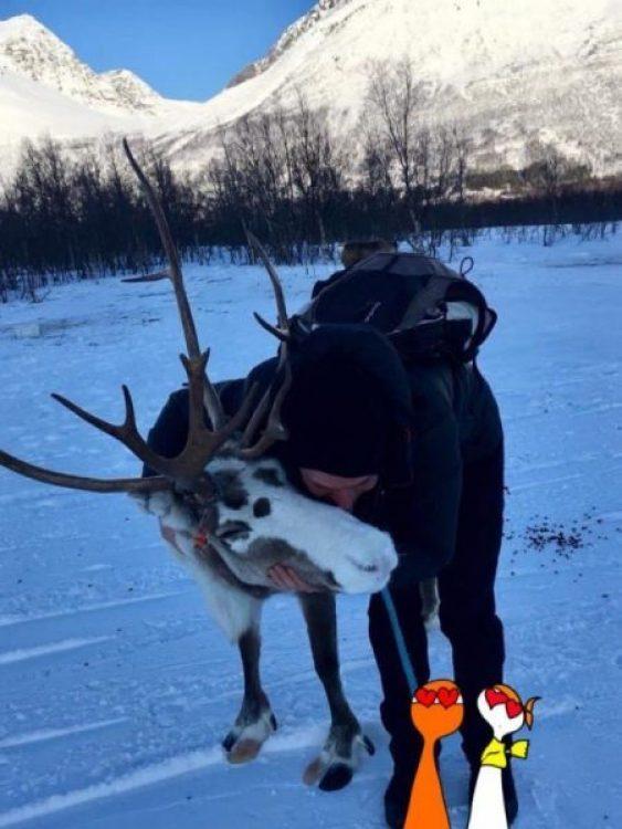 Cosa fare a Tromsø in 5 giorni