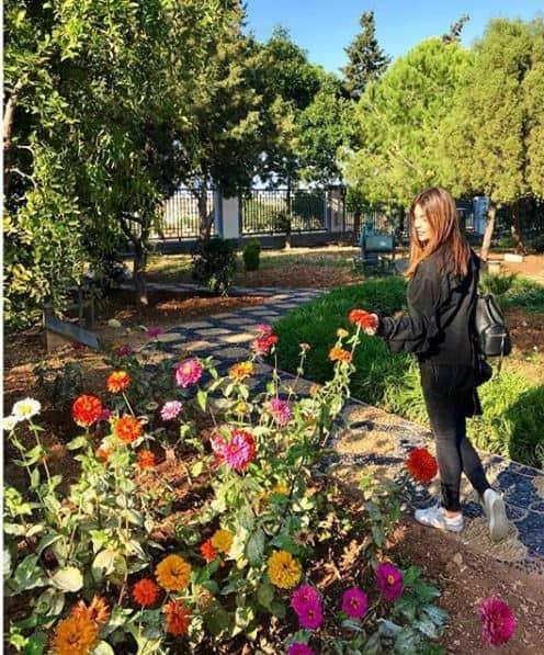 Malta giardini