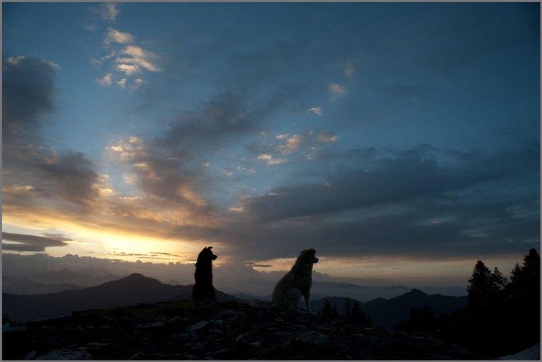 Hatu Peak-Narkanda (3)