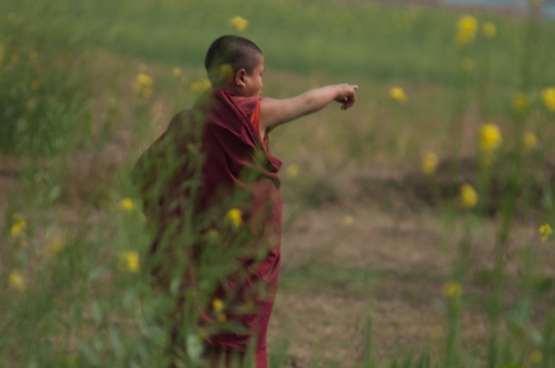 young monk in Bodhgaya