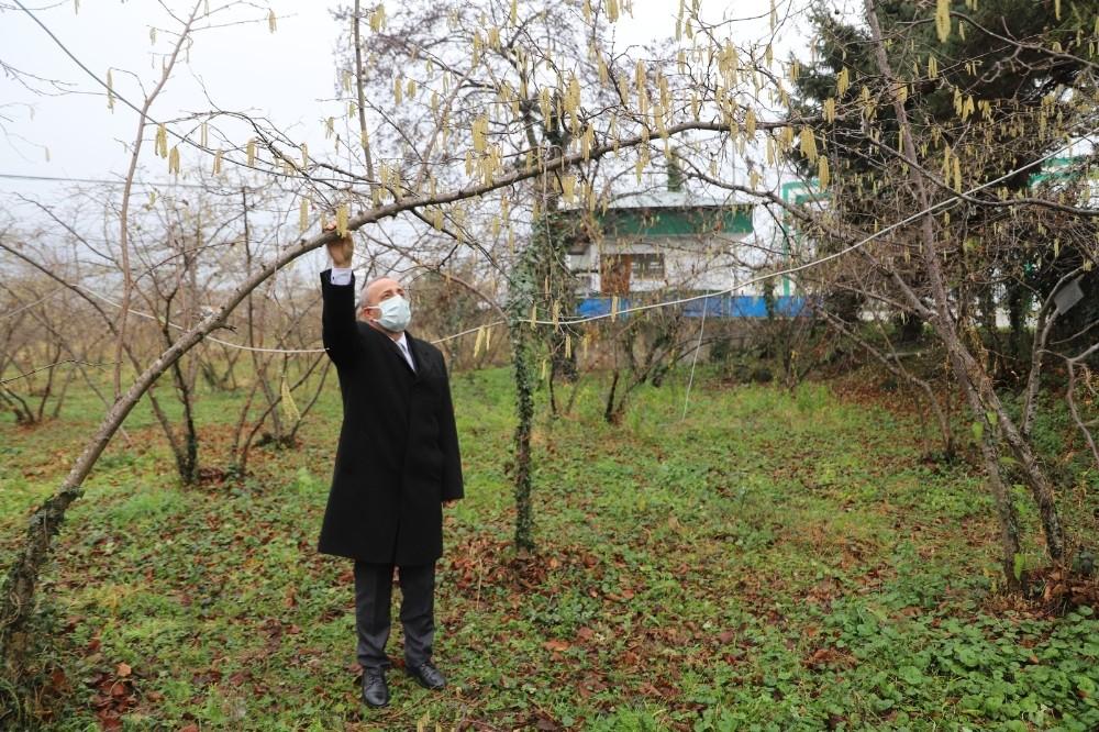FİSKOBİRLİK'ten fındık üreticilerine sigorta uyarısı