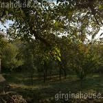 Дворът на Вила Гиргина