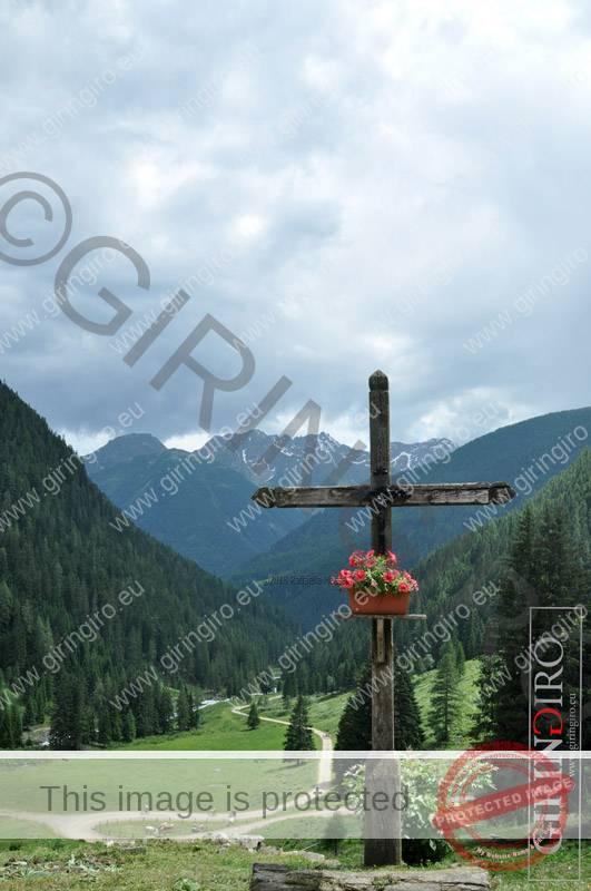 Escursione larici monumentali
