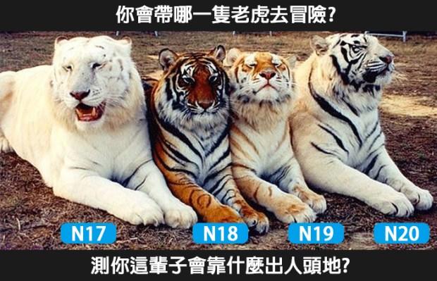 191_你會帶哪一隻老虎去冒險,測你這輩子會靠什麼出人頭地_主圖