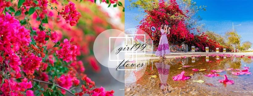 幫你把最熱門的花海美景通通打包!從櫻花到木棉花,浪漫一整個春天~