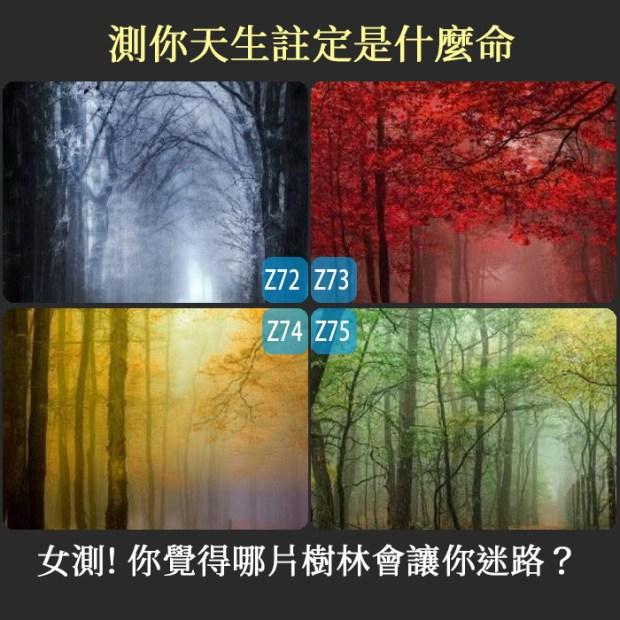 【個性心理測驗】女測!你覺得哪片樹林會讓你迷路,測你天生註定是什麼命