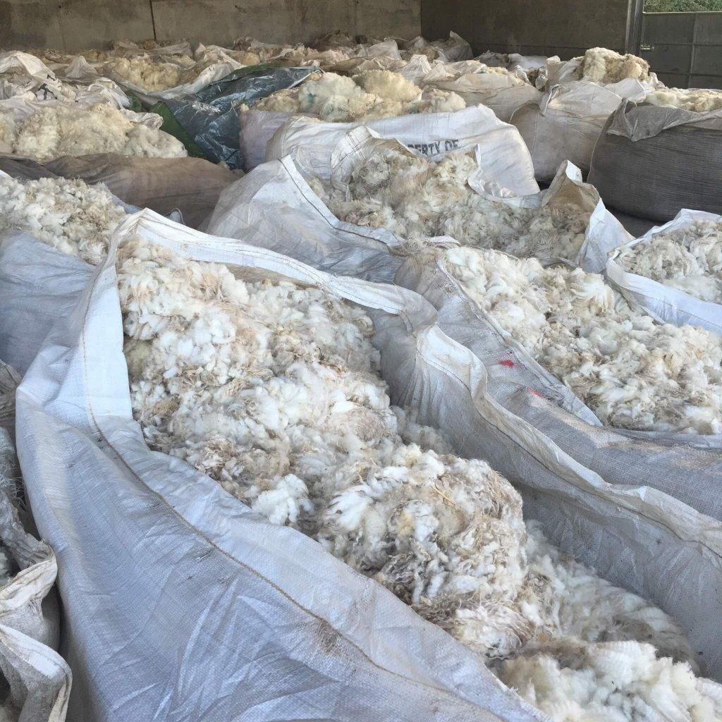 Shearing FAQs