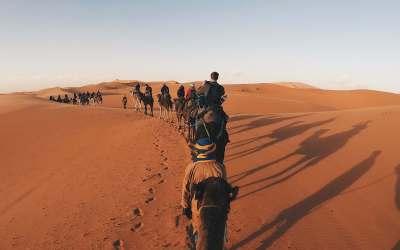Tour nel deserto del Sahara: guida completa