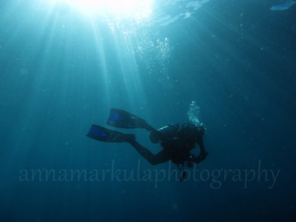 diver_and_sunlight