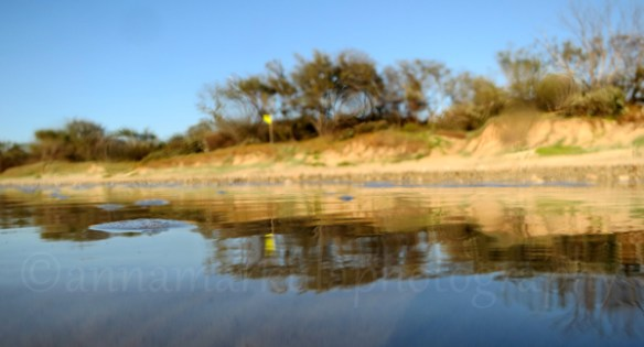 dune_reflections