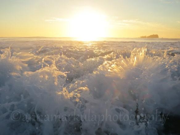 sun_foam