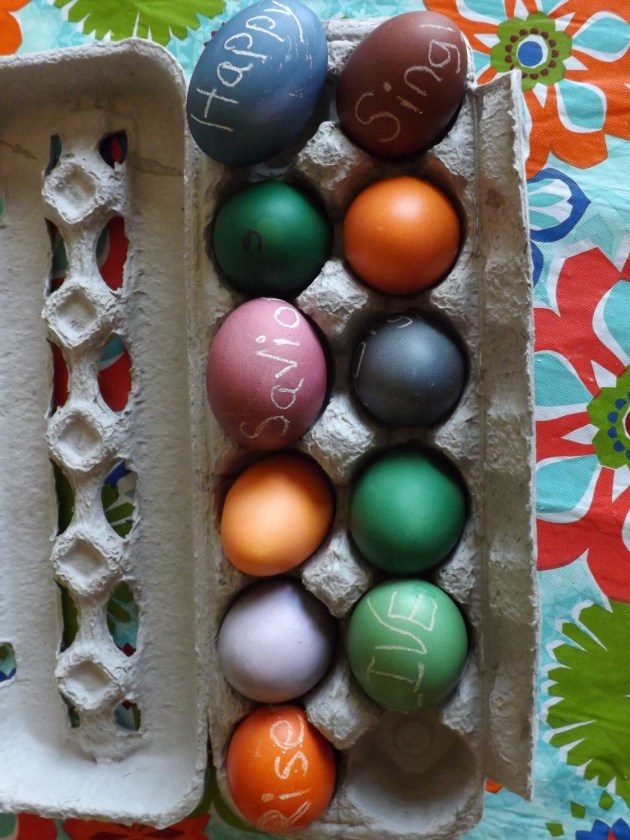 brown eggs make such pretty colors!