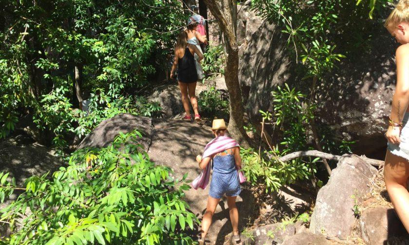 Trekking to Motorcar Falls