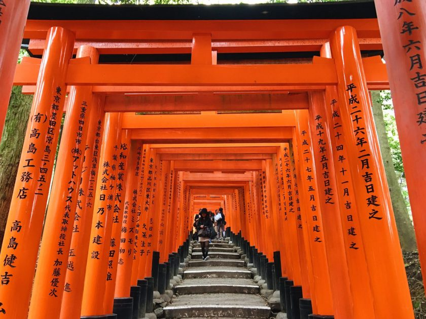 The rows after rows of torii gates at Fushimi Inari