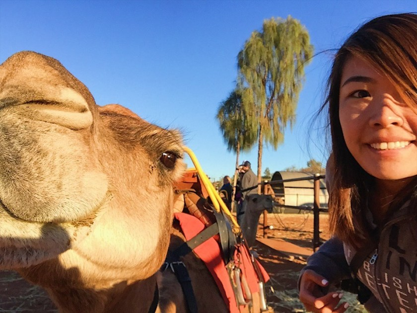 Selfie with my Camel!