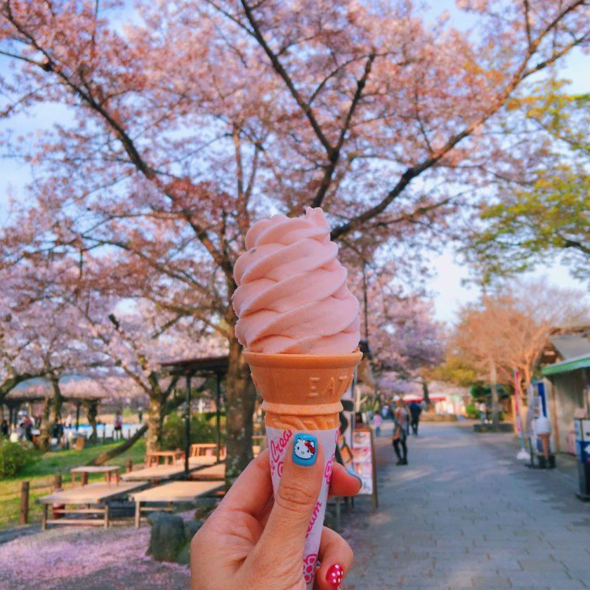 Sakura Soft Serve Ice Cream