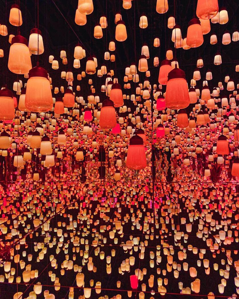 teamlab Borderless - Forest of resonating lamps
