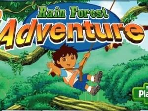 Rain Forest Adventure