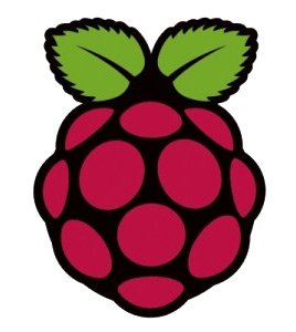 Hacking with the Raspberry Pi