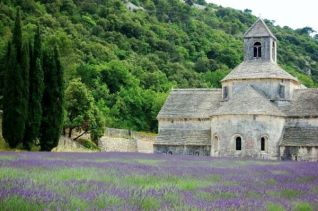 discover the real provence