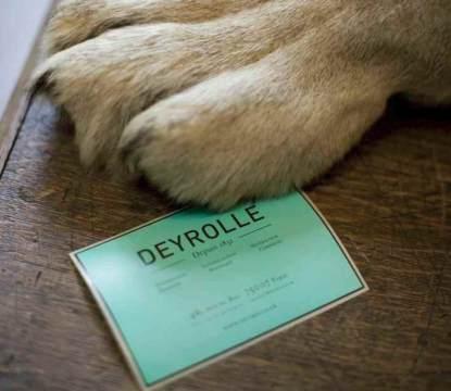 Deyrolles9