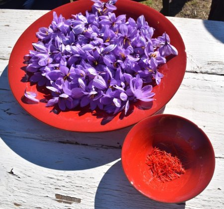 French Saffron - Provence - Marseille - Cooking with Saffron