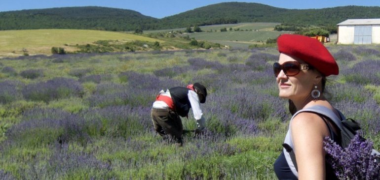 Picking the lavender fields of Valensole - Best of 2016 - France