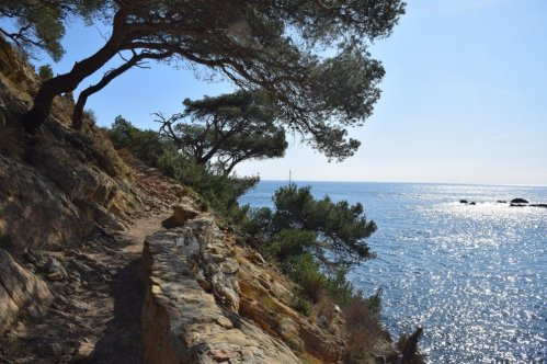 Provence's Blue Coast - towards la Grotte Marine near Grand Mejean