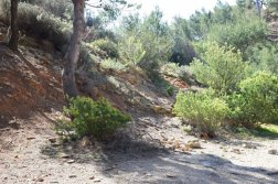 Provence's Blue Coast - correct path