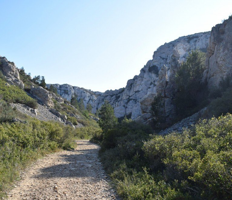 The Côte Bleue - Provence's Côte Bleue - trail to Calanque d'Erevine from dirt road