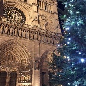 Paris Parisian Holiday Season - Close Up