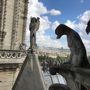 Honoring Notre-Dame-de-Paris - Rooflines