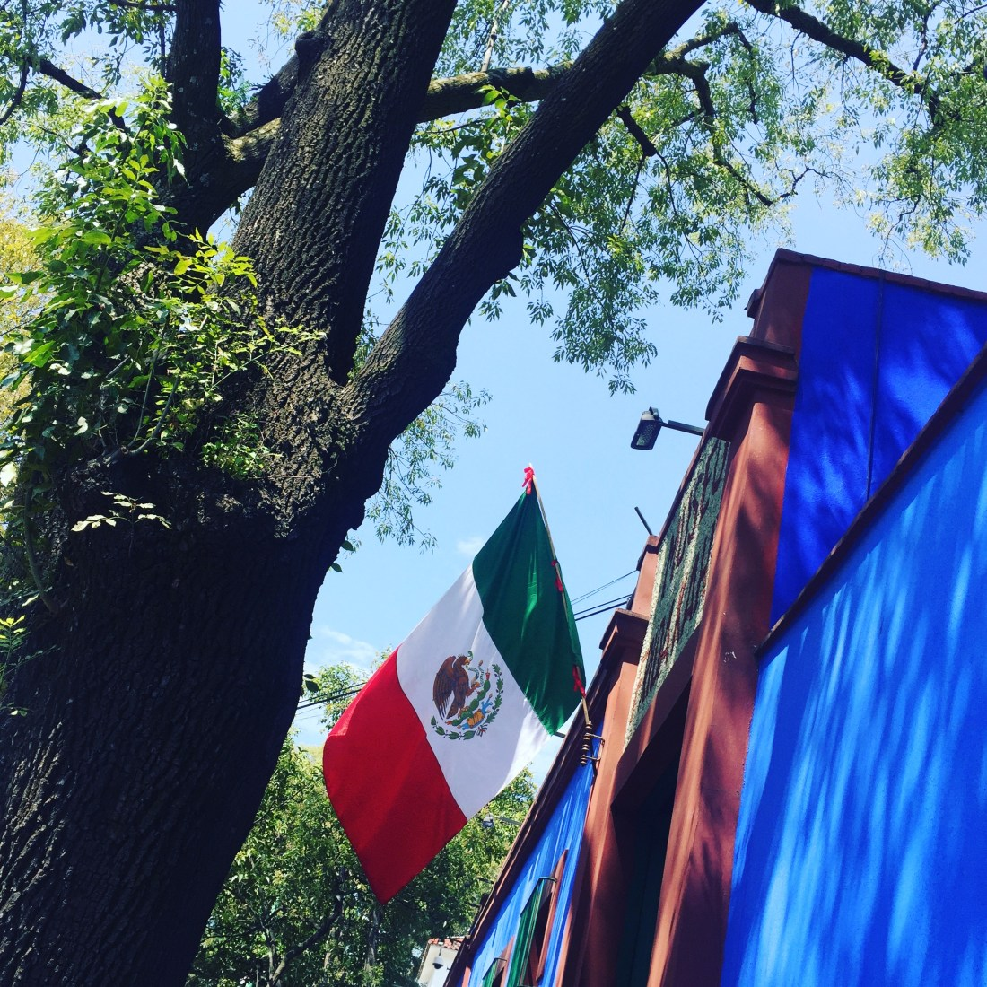 Mexican flag at Frida Kahlo in Mexico City