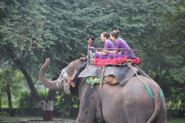 Riding Laxmi the elephant in the Sangam campground with fellow volunteer and GGC member, Kara.